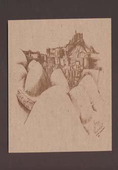 ارگ بم ،بامهای شهر و برج و باروی قلعه