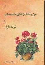 من و گلدانهای شمعدانی و ترنم باران