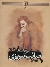دیوان اشعار صائب تبریزی (3 جلدی)