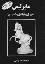 مایزلیس ،تئوری بنیادی شطرنج